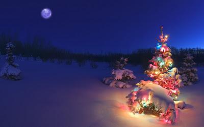 arbol de navidad christmas tree 1920x1200 wallpaper