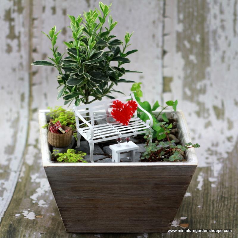 enfeites para mini jardim : enfeites para mini jardim:Que tal um jardim romântico para o amado, com direito a taça de
