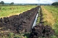 Manfaat tanah gambut, Pengertian Tanah Gambut, ciri ciri tanah gambut, jenis tanah gambut, tanah gambut