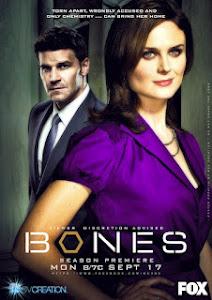 Ver Bones Capítulo 8x11 Sub Audio Español Latino ~ TeledeportesHD