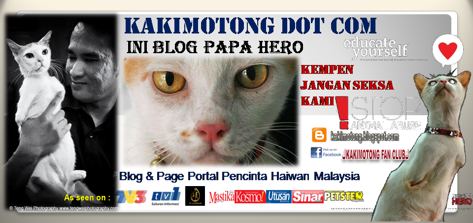 KAKIMOTONG DOT COM