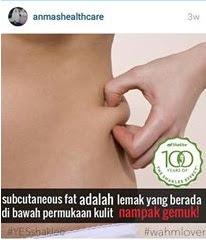 Lemak Subcutaneous