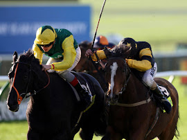 AAIM TO PROSPER Winning The 2012 Cesarewitch At 66/1 - Was Tipped By Us