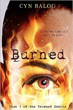 Burned (2016)