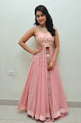 rashi khanna at Bengal tiger audio-thumbnail-19