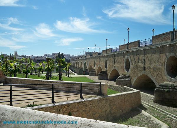 Badajoz Puente de Palmas turismo