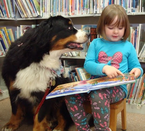 Image result for dog and reading with kids