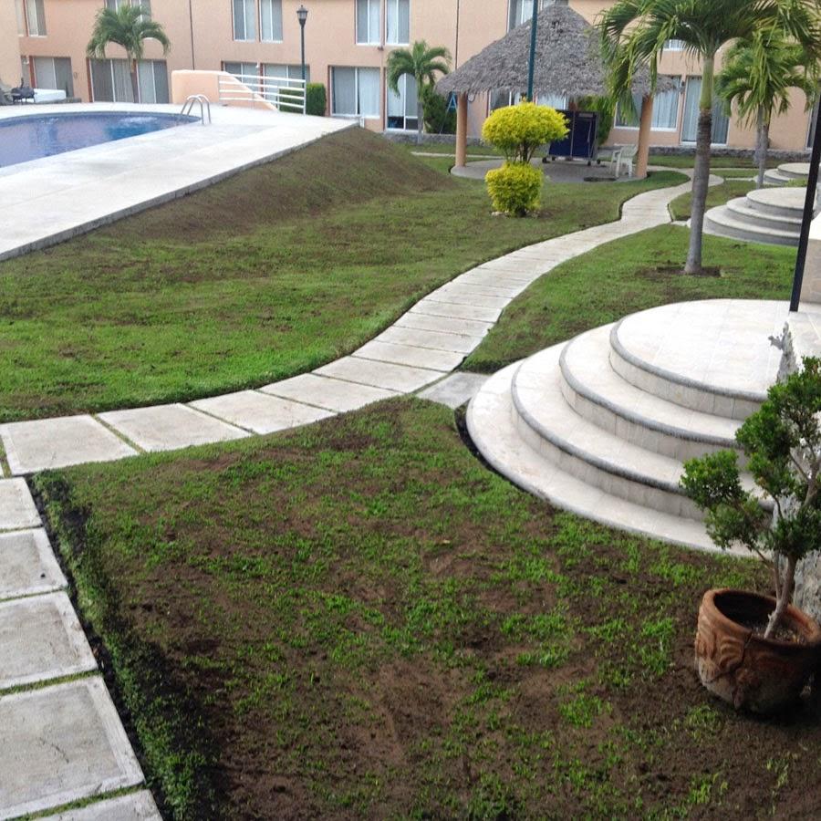 Tierra negra para el jard n oasis2 clusterh for Tierra para jardin