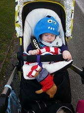 Teddy Tug, toy saver for buggys, www.emmysmummy.com, teddy tug review