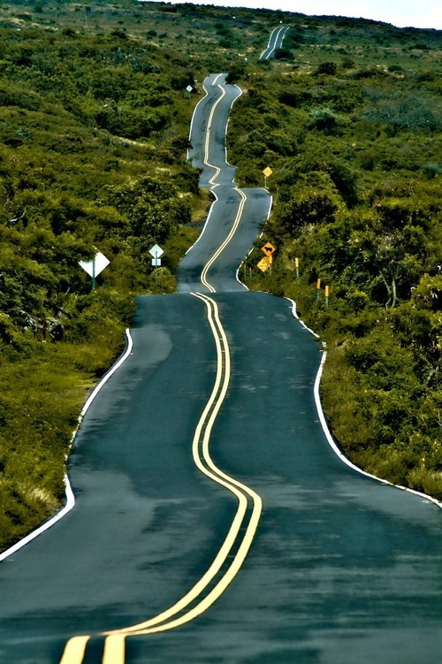 Amazing Paths