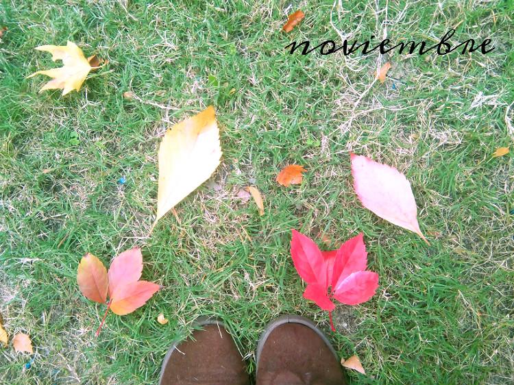 otoño en noviembre