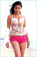 Hot, shriya, saran, latest, cleavage, show, images