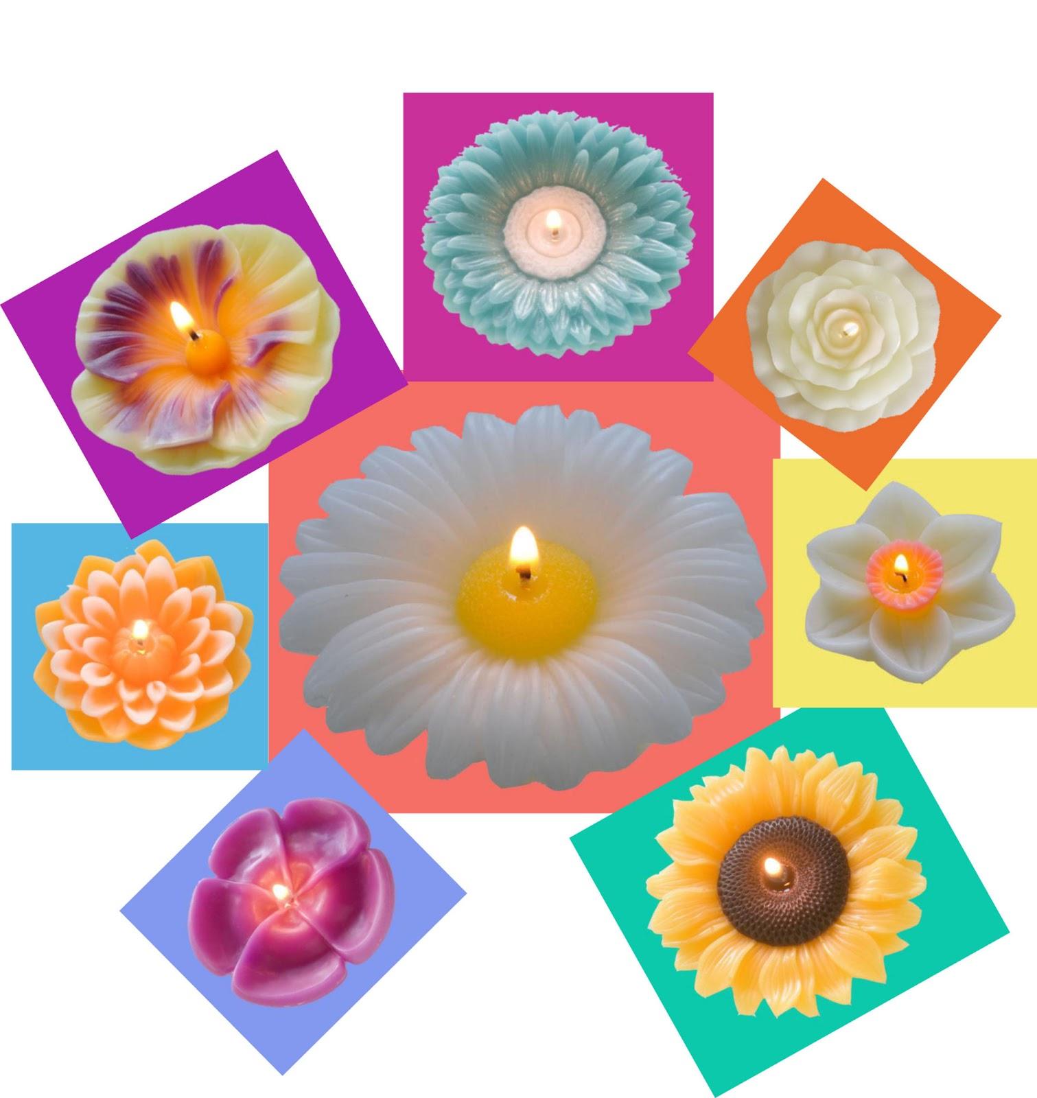Plumeria, Daisy, Gerbera Daisy, Dahlia, Pansy, Sunflower, Rose, Daffodil