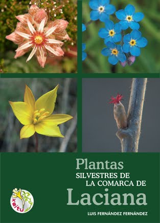 PLANTAS SILVESTRES DE LA COMARCA DE LACIANA.