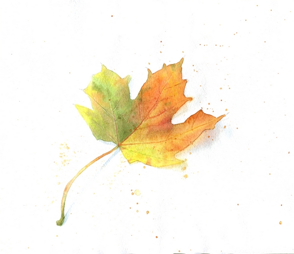 осенний лист акварель