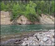 Morice River 2