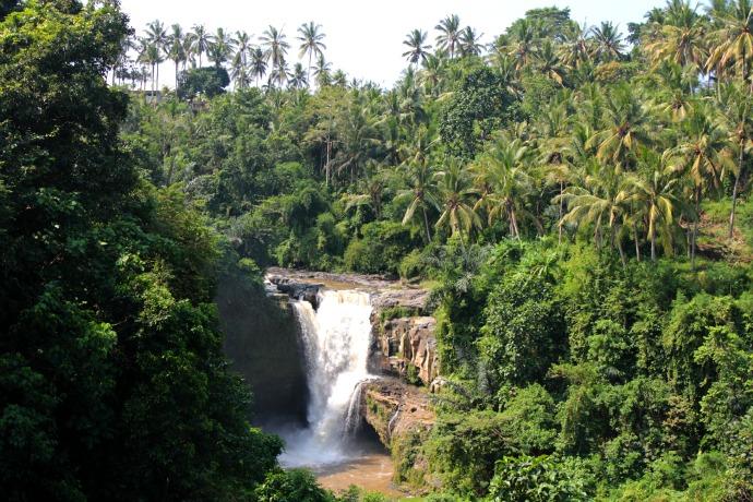 Ubud Waterfall Bali