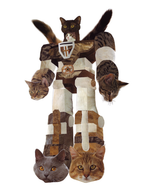 I Present To You A Super Power Megatron Kitty