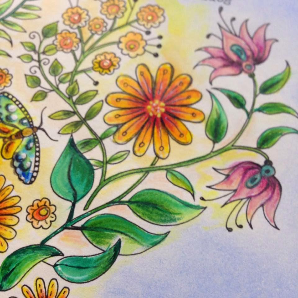 Aula Técnicas Pintura Jardim Secreto 25/04/15 às 9h