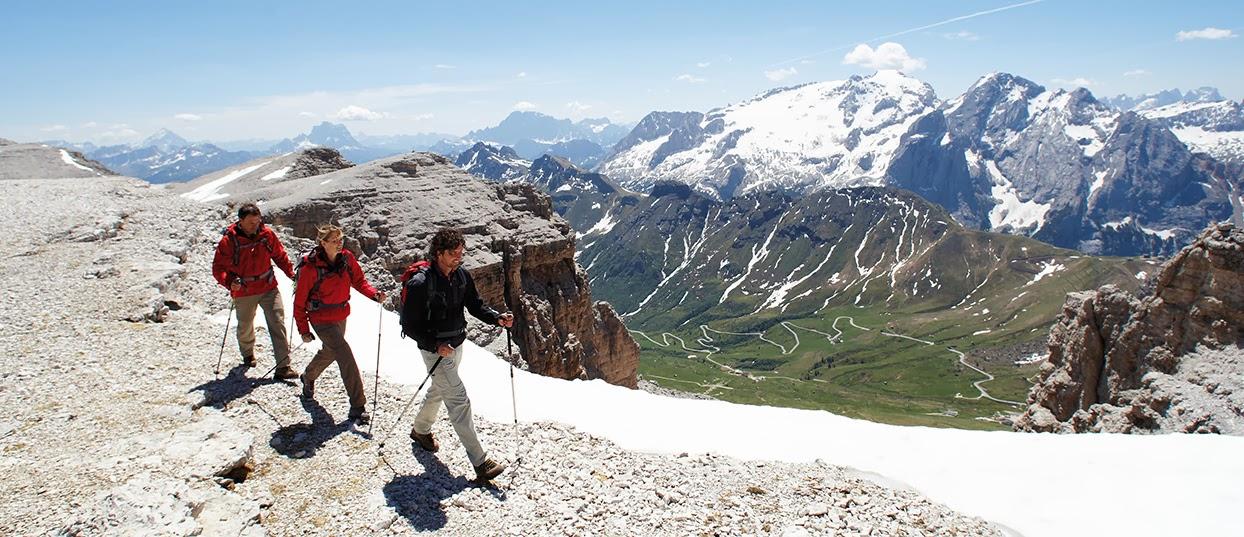 Leki Trekking Poles