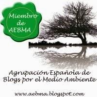 Miembro de AEBMA