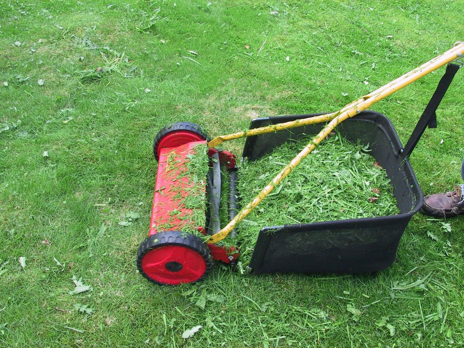 Bildresultat för bild gräsklippning