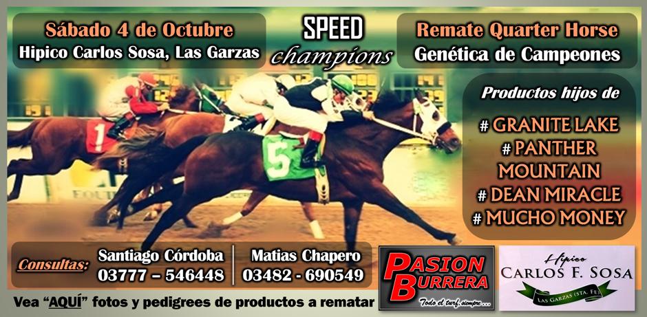 REMATE LAS GARZAS - SPEED CHAMPIONS