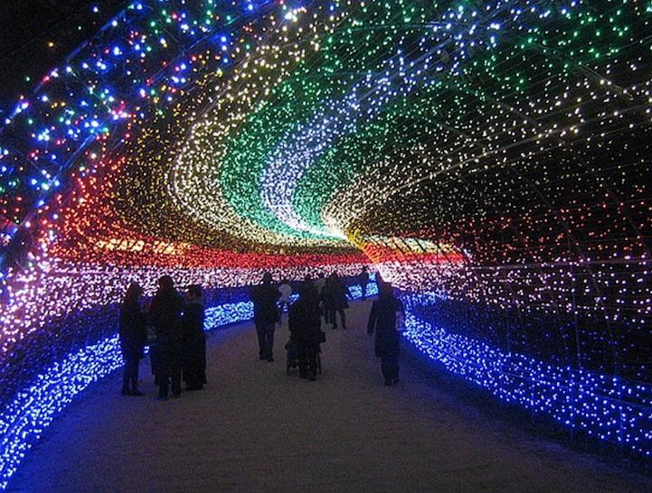 Graceospace Fairy Light Tunnel