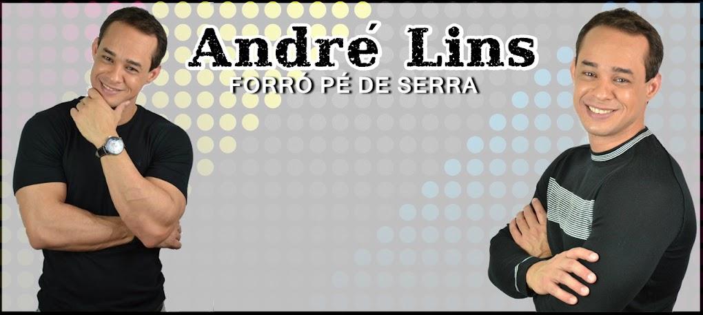André Lins - O Autêntico Forró Nordestino