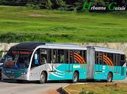Neobus Mega BRT