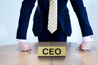 Chief Executive Officer / President Salary