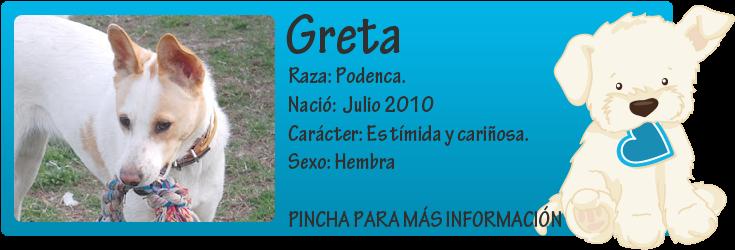 http://mirada-animal-toledo.blogspot.com.es/2012/05/greta-nuestra-podenca-urgente-se-queda.html
