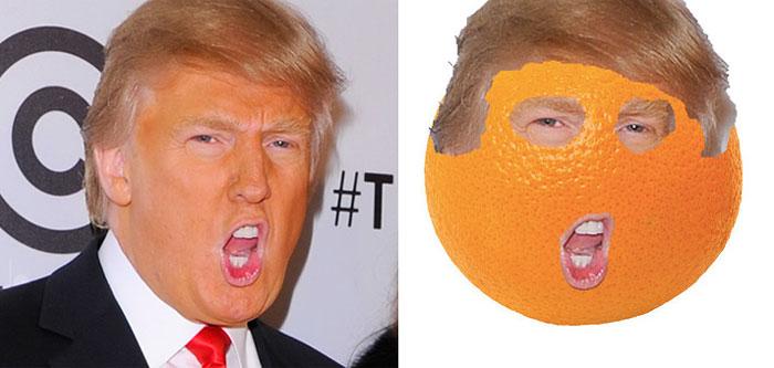 donald-trump-funny-look-alike-17__700.jp