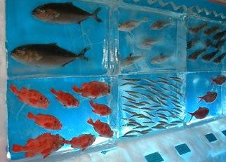 strange frozen aquarium