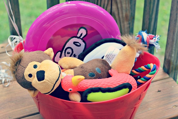 dog toys for party