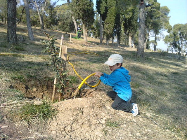 Αλκυονίδες Ημέρες Εθελοντικής Εργασίας