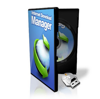 Internet Download Manager beta version