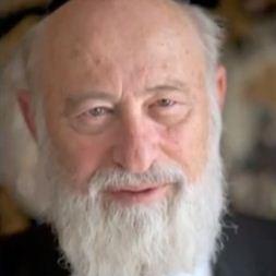 rabino David Goldberg