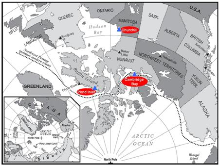 map of canadiam artic showing study sites of Pond Inlet Cambridge Bay and Churchill