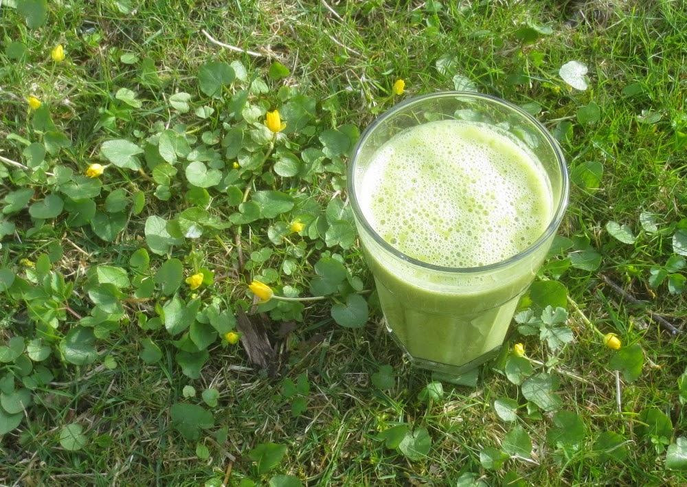 Grüner Smoothie mit Feldsalat und Orange