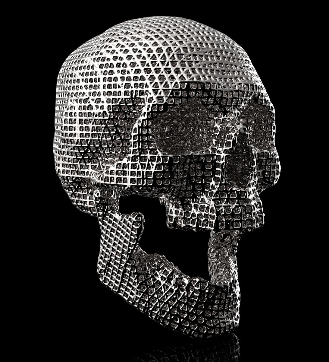 Michael Ferrari-Fontana: Life Size Wire Frame Human Skull 3d print