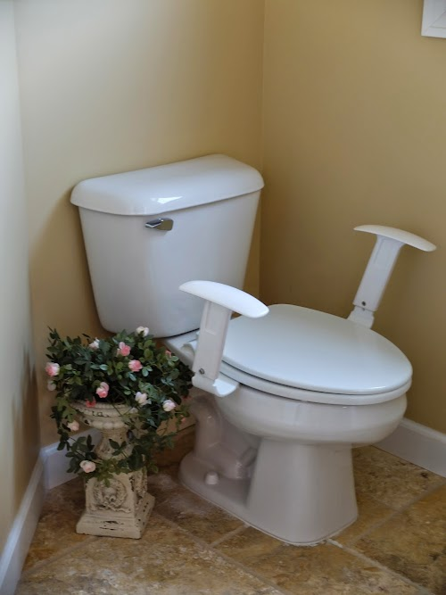 Adagio arms armrests for the toilet instead of grab bars universal design for accessible homes - Universal design for homes ...