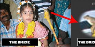 gadis kecil menikah dengan kodok rev2 7 Manusia yang Kawin dengan Binatang