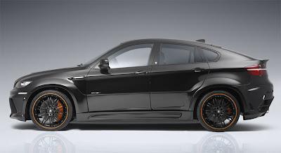 BMW X6 sports steering wheel