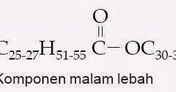 contoh senyawa steroid adalah