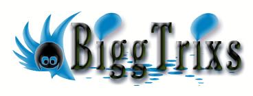 BiggTrixS