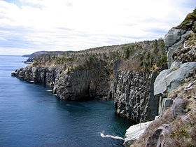 The coast of the Avalon Peninsula