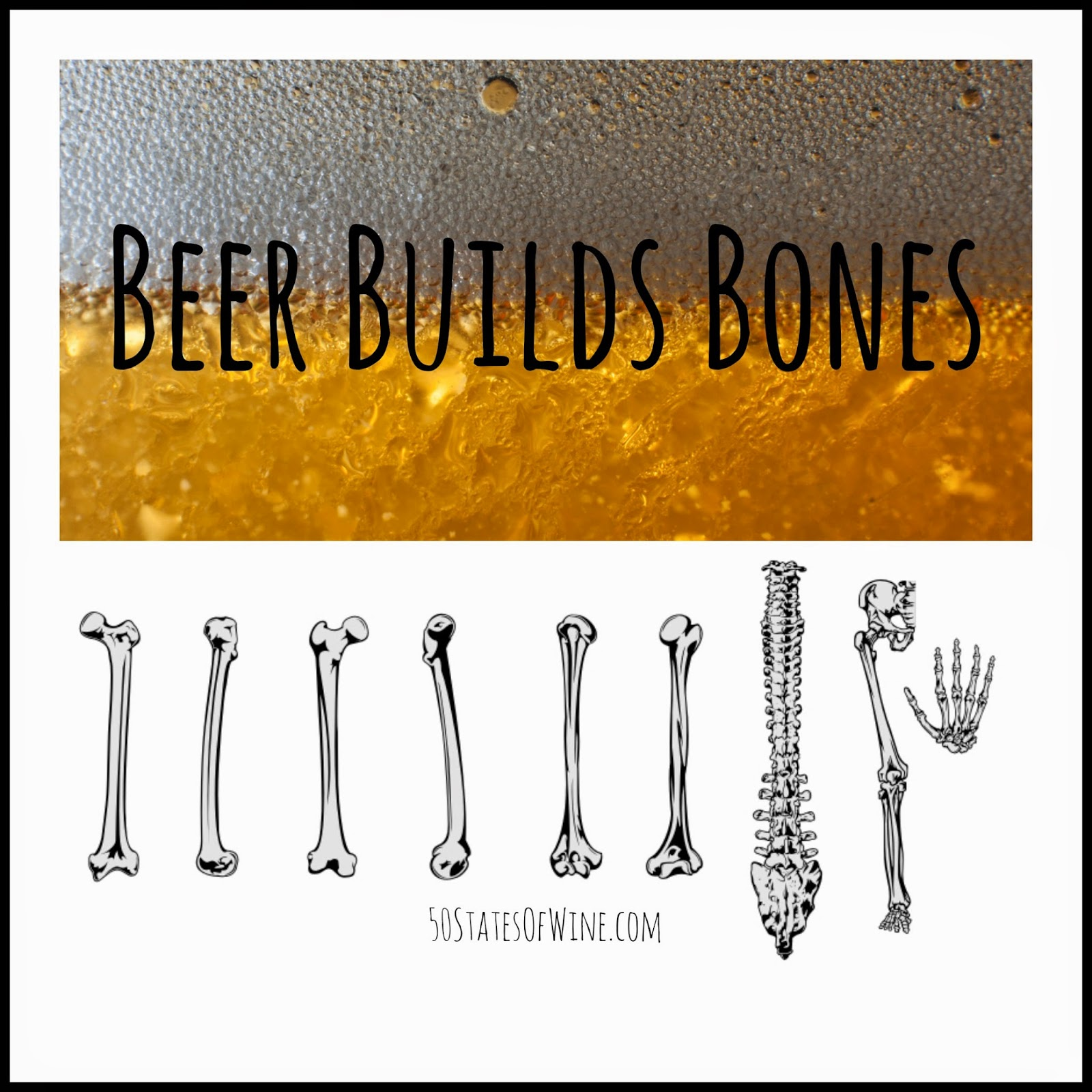 Beer Builds Bones
