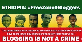 Freezone9Bloggers