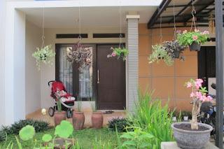 Membuat taman minimalis moderen